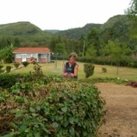 Gartenpflege und Sport
